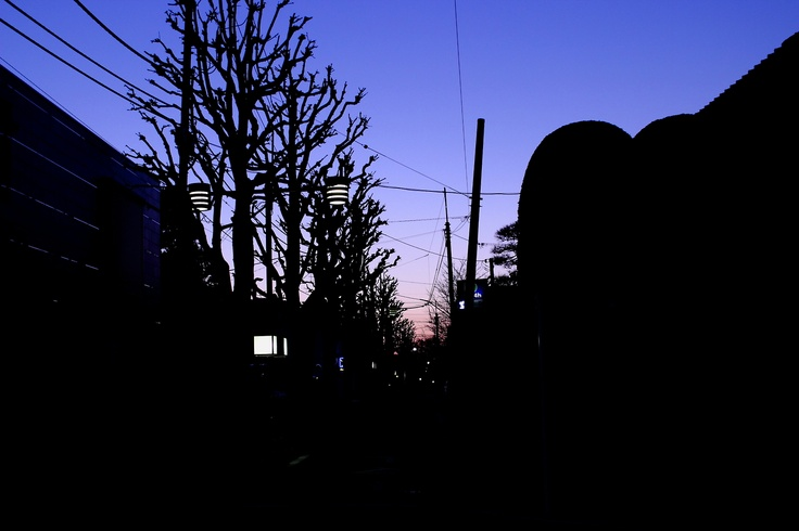 Tokyo, Tokiwadai in the morning glow.