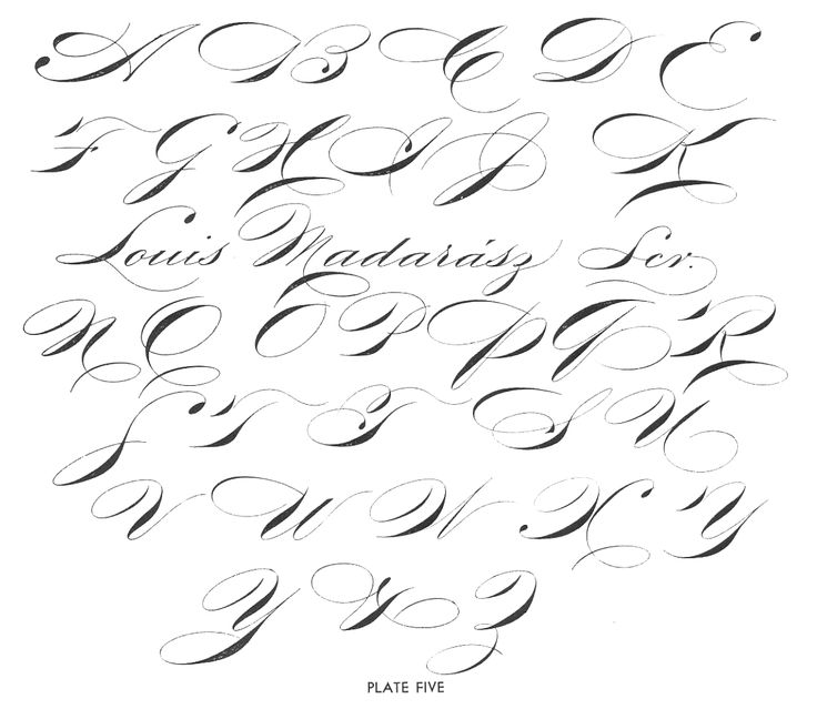 17 Best Images About Just Spencerian On Pinterest