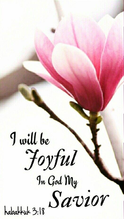 Habacuc 3:17-18 Aunque la higuera no florezca, Ni en las vides haya frutos, Aunque falte el producto del olivo, Y los labrados no den mantenimiento, Y las ovejas sean quitadas de la majada, Y no haya vacas en los corrales; Con todo, yo me alegraré en Jehová, Y me gozaré en el Dios de mi salvación. ♔
