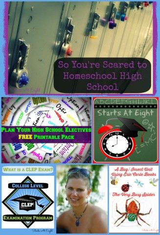 Homeschooling the Middle & High School Years