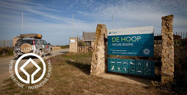 De Hoop Nature Reserve is one of the largest natural areas managed by CapeNature. This reserve is a favourite for hikers, cyclists, bird and whale watchers.