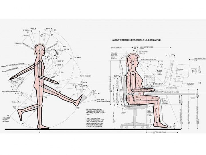 Qué es la ergonomia en el trabajo: tablas de antropometría de Henry Dreyfuss