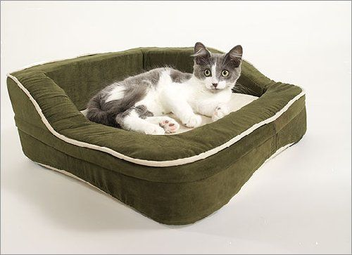 1000 Ideas About Heated Dog Bed On Pinterest Heated Pet