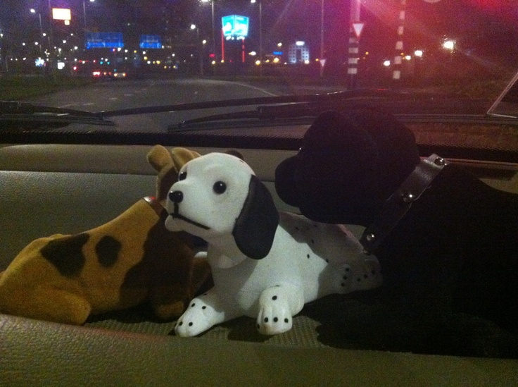 Bob, Ed and Babette on a family trip in the night