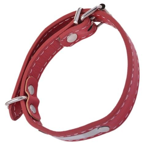 PU Adjustable Dog Leash (Red)