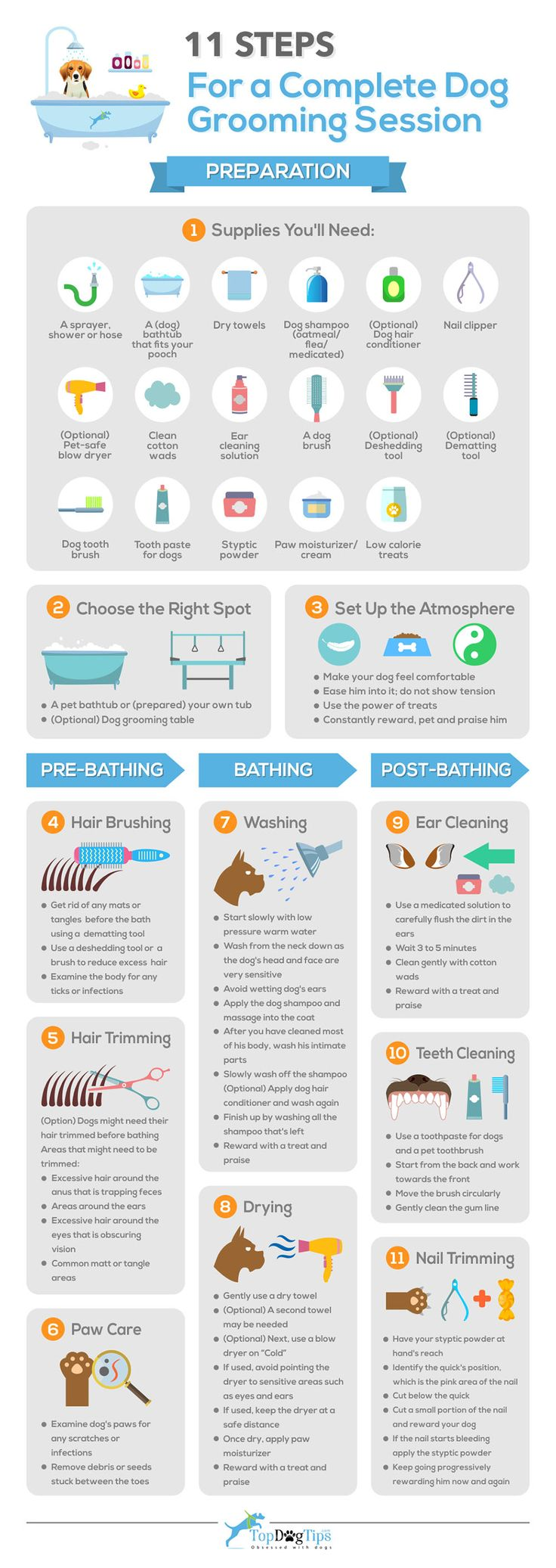 11 Quick Dog Grooming Steps #infographics