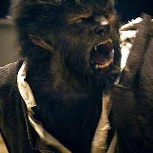El hombre lobo : Foto Benicio Del Toro, Joe Johnston