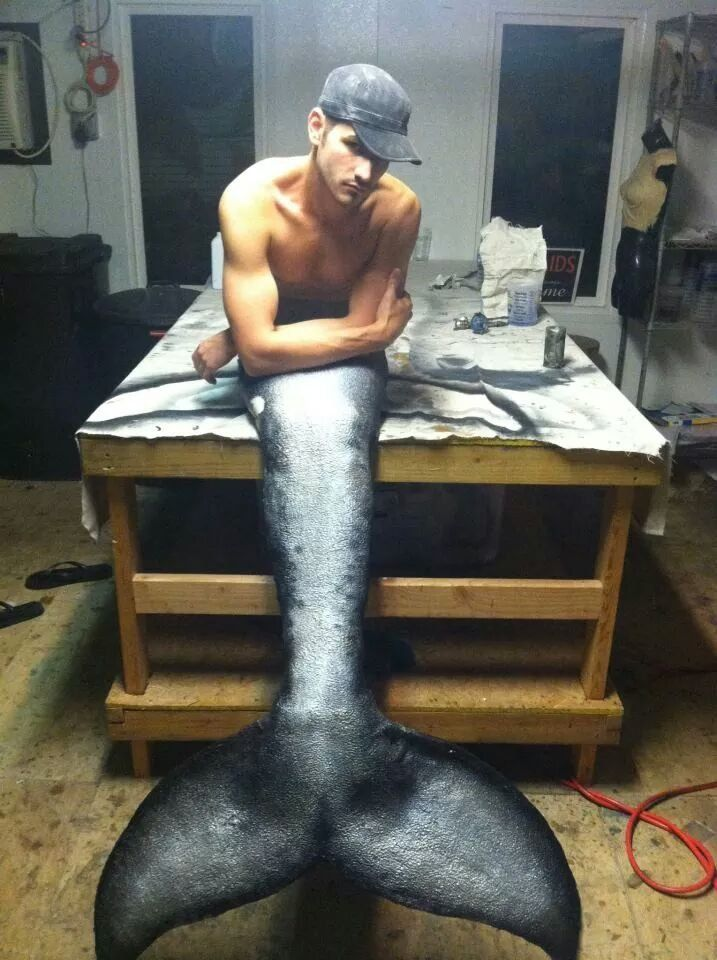 dolphin mermaid tail -- I think a mammal tail would be more realistic!