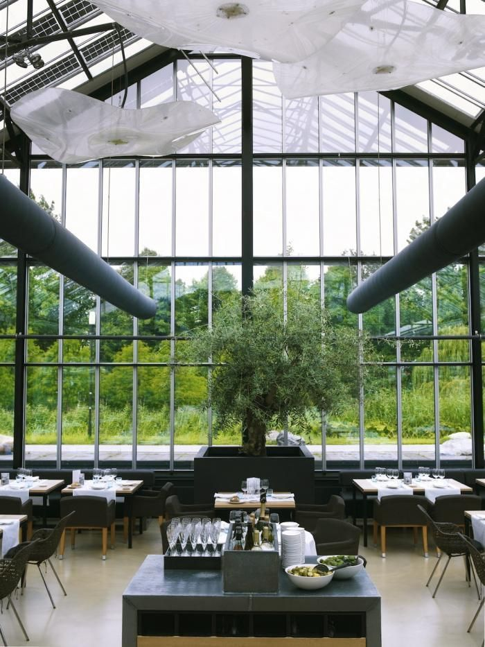 Greenhouse - Amsterdam