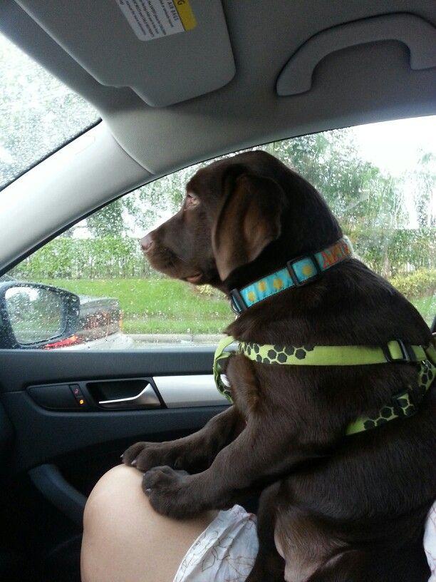Rainy day ride