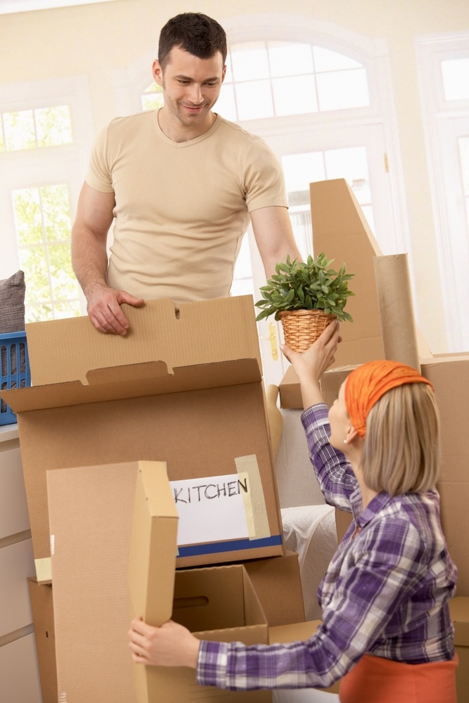 Gold coast Removalists   All Purpose Removalists http://fetched.com.au/