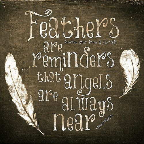 Angels... When you find a feather say a little prayer of thanks...