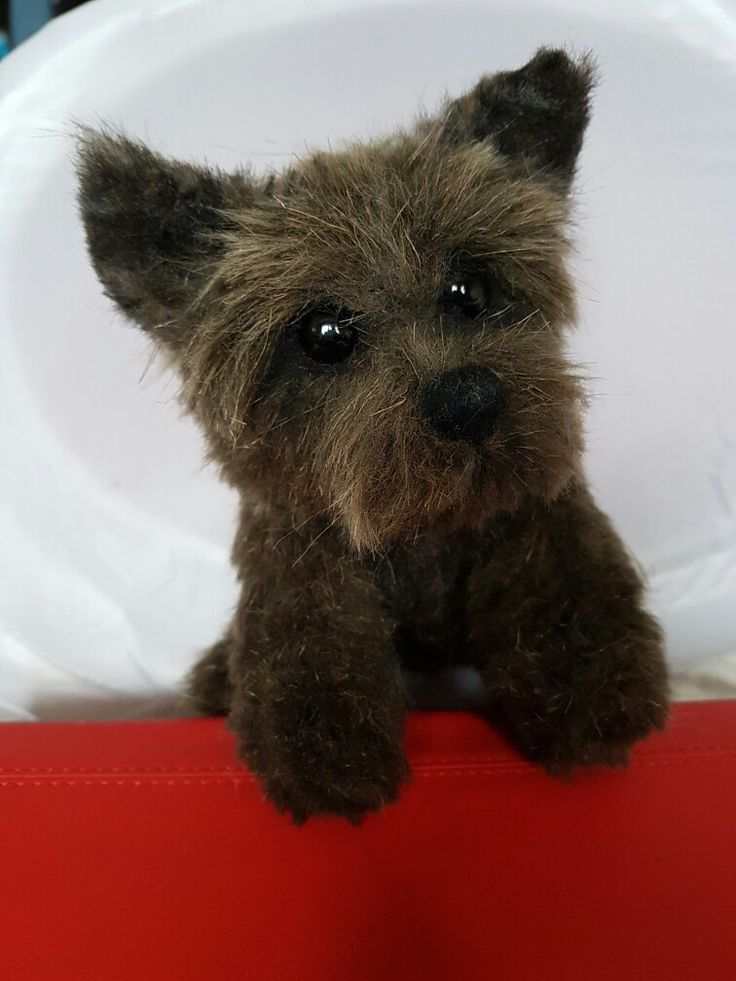 Cairn Terrier by 21st Century Bears