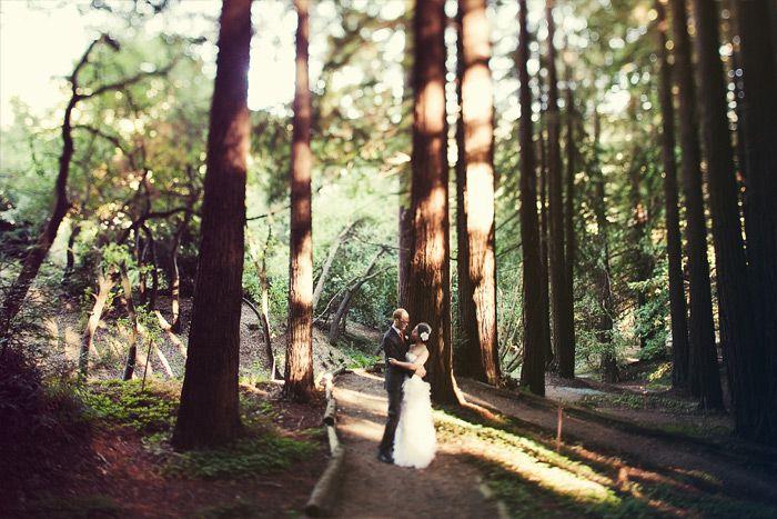 10 Best Go Huskies Images On Pinterest University Of Washington Washington University And