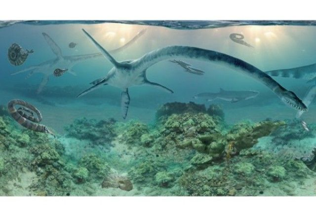 """Ancient Long-Necked Marine Reptile Discovered in Alaska 
