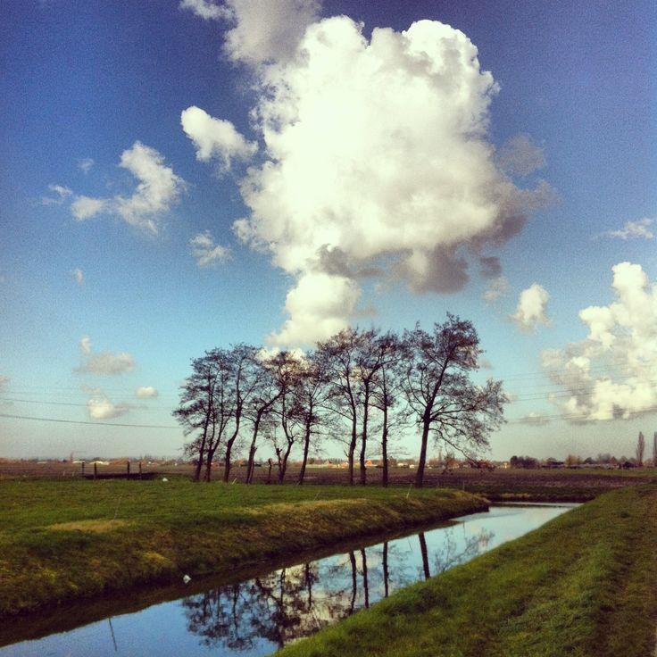 Zwaagdijk-West, the Netherlands