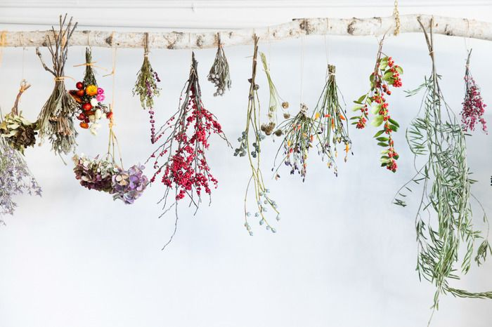 自然な風合いを楽しんで。ドライフラワーや押し花をインテリアに