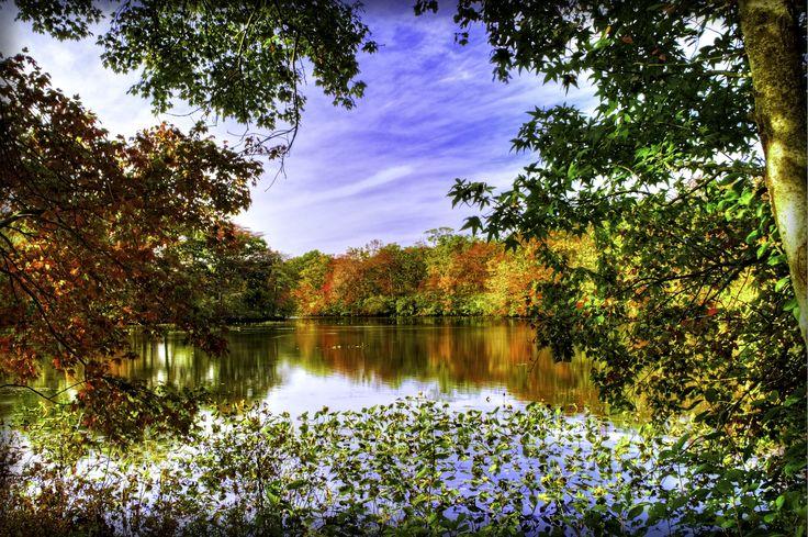 Vackert landskap i höstskrud.