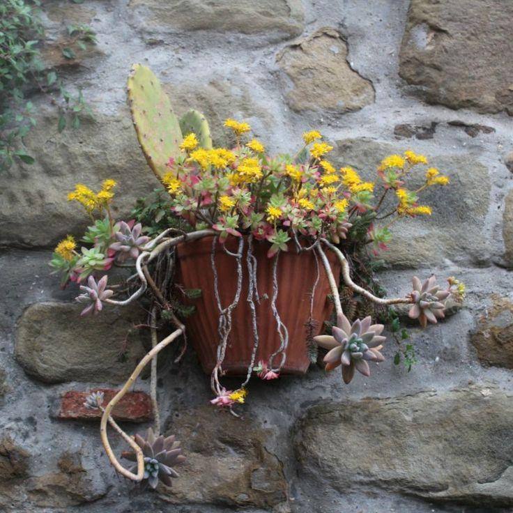 I love the old walls of Uzzano #startthedaywithsomethingbeautiful