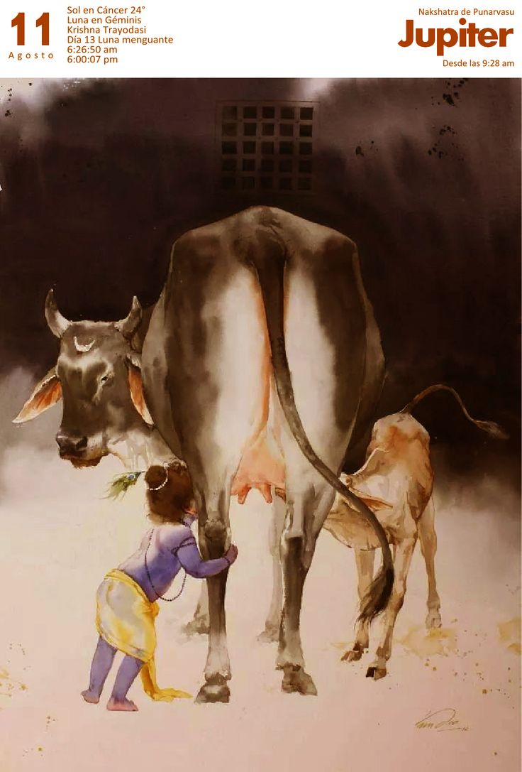 KRISHNA - with his cow and her calf.