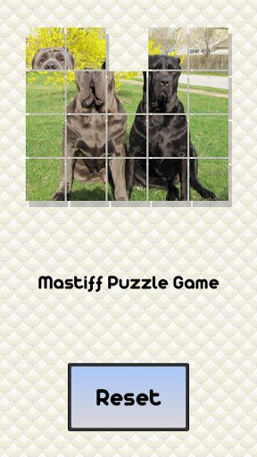 These mastiffs have become all mixed up... can you straighten them out?<p>This is a great puzzle game that challenges your mind while enjoying these beautiful animals.<p><br>Description<p>The Old English Mastiff is a massive dog. The Mastiff has a large, heavy, square head with a well-marked stop between the eyes. The muzzle should be half the length of the skull. The medium-sized brown to dark hazel eyes are set wide apart with a black mask around them. The nose is dark in color. The small…