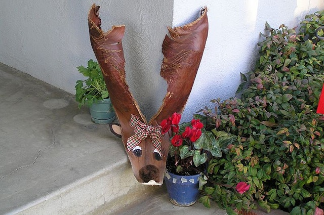Thinking of making a palm frond reindeer.