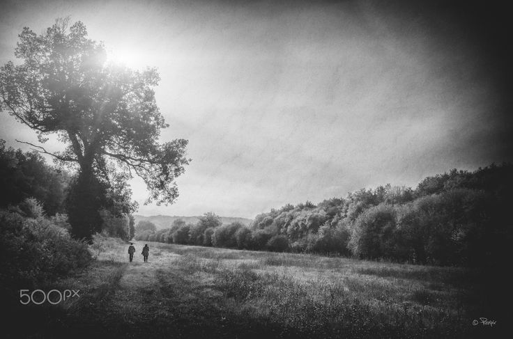Pressigny #2 - Walking on the natural path