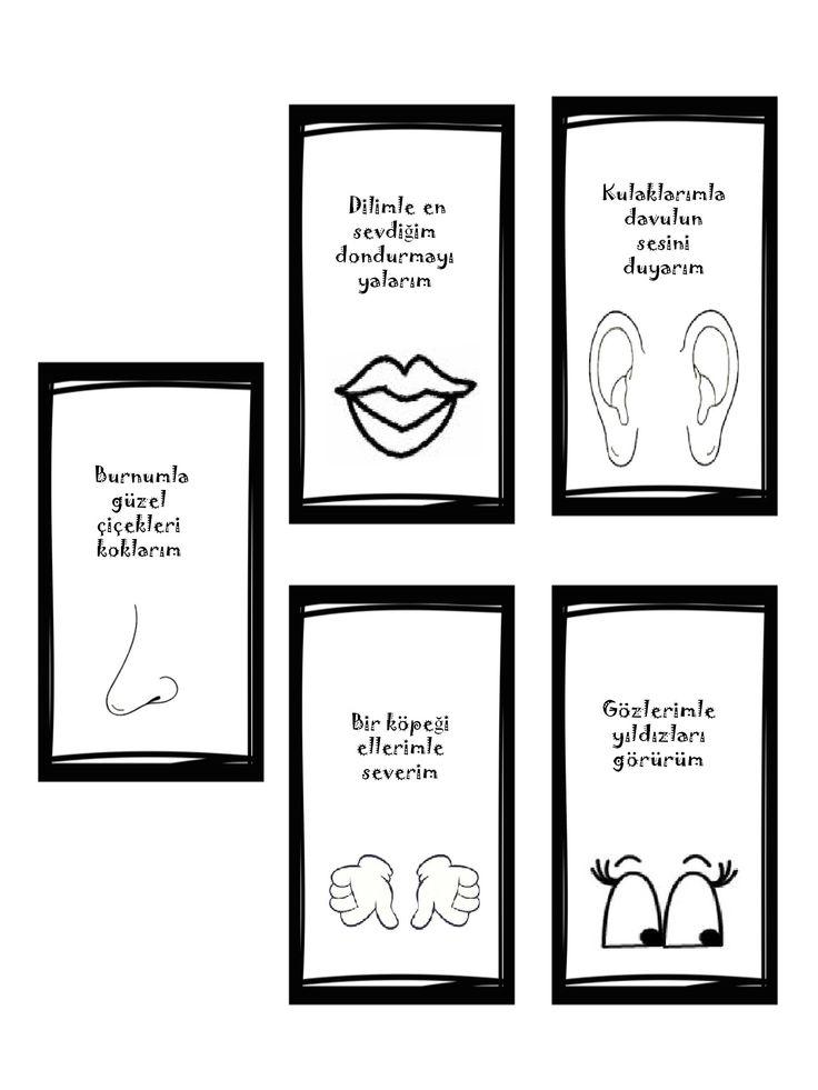 5 duyum