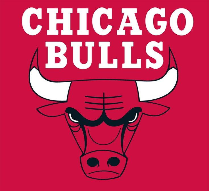 27 best chicago bulls images on pinterest chicago bulls hd show your team spirit with this great looking nba licensed chicago bulls sidelines pillow by sports coverage voltagebd Gallery