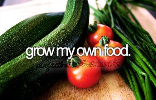 Done :): Bucketlist, Before I Die, Gardens, Vegetables Garden, Huge Garden, Vegetable Garden, Bucket Lists