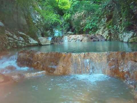 Ποταμός Νέδα