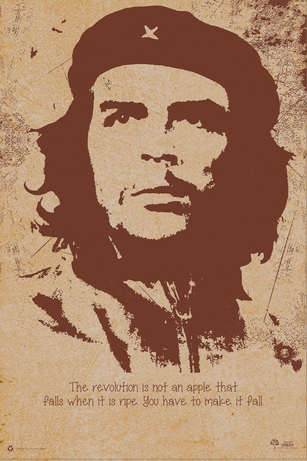 """The Revolution is not an apple that falls when it is ripe. You have to make it fall"" - Che Guevara"