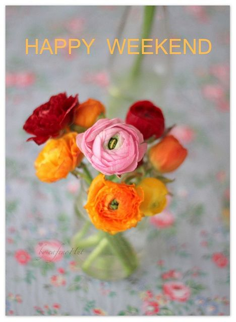 Happy Weekend Cad by cafe noHut, via Flickr