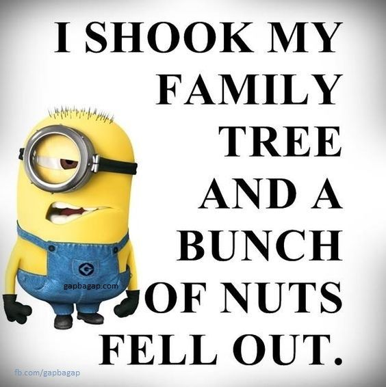 Funny Jokes Pictures And Quotes: 25+ Best Minion Jokes Ideas On Pinterest