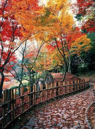 Visite Takamatsu, l'ancien fief seigneurial de Shikoku