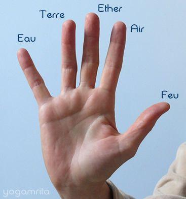 hasta_mudra_5_elements. Chacun de nos doigts est connecté à un élément. Ainsi en les faisant se rejoindre on peut travailler sur l'association de ses éléments en nous et leur équilibre