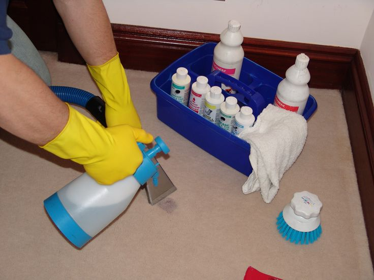Tips For Removing Pet Odors And Homemade Pet Odor Removers