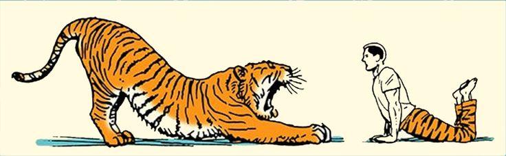 Wake Up Like an Animal: Your Morning Stretching Routine - Ak sa chcete striasť rannej lenivosti, choďte v stopách Sioux-ov (kmeň domorodých Američanov), ktorí nasledovali stopy zvierat. Trošku ponaťahovania sa hneď po prebudení vám prekrví telo, uvolní stuhnutosť a stnulosť.