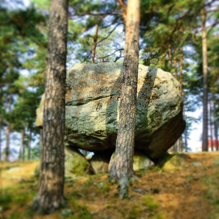 Big rocks like the one shown here are a common sight in Finland. They were left over from the ice age. In fact the rock shown here is one of the smaller ones. ...#finland100_igchallenge ..61/100 ... 'posting a series of random images from or associated with Finland to celebrate the country's 100th birthday!  . #rock #stone #rocks #thisisfinland #finlandia #finland #visitfinland #trees #nature #forest #weareinfinland #finnish #sten #kivi #woods #november #marraskuu #skogen #natureshots