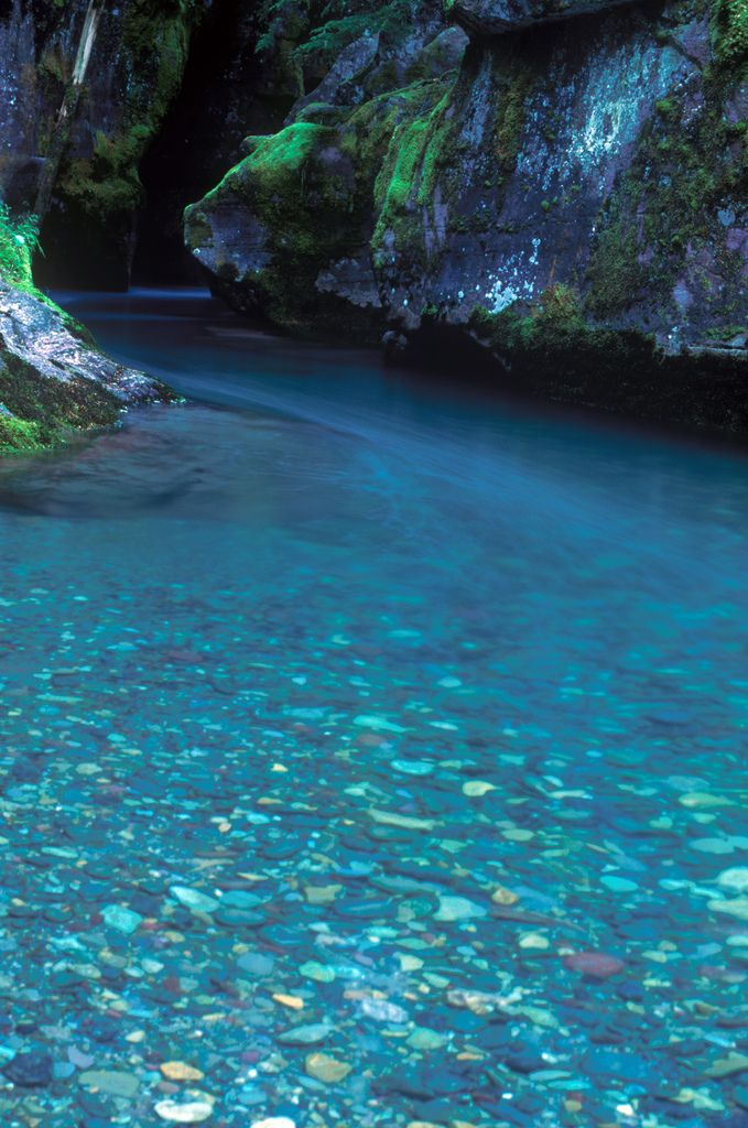 Avalanche Creek flows over colorful rocks, Trail of the Cedars, Glacier National Park, Montana