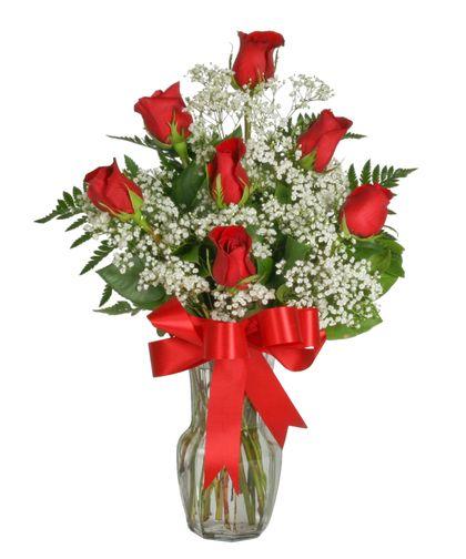 17 Best Roses Images On Pinterest
