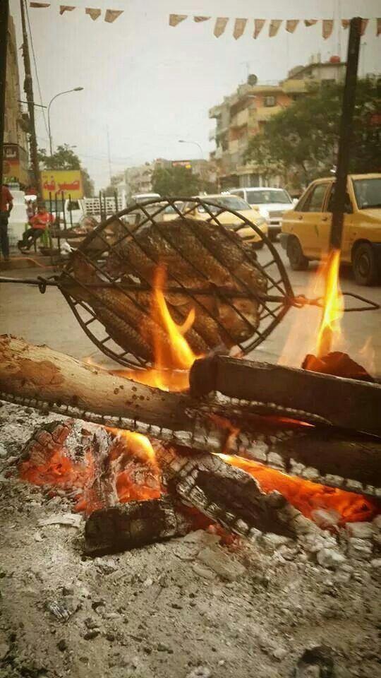 Maskoof .. Iraqi way of grilling fish in Iraq ..