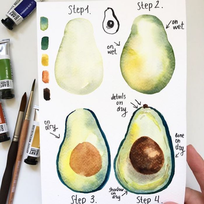 Step by step instructions for drawing avocado, instructions in four steps …