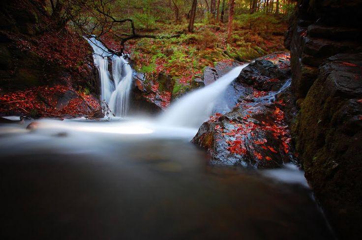 ninglispo - Ardennen - mooie wandeling