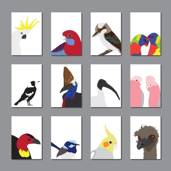 Gorgeous set of cards featuring Australian birds from birdie mckelvey