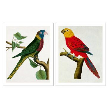 Check out this item at One Kings Lane! Parrots by George Le Clerc