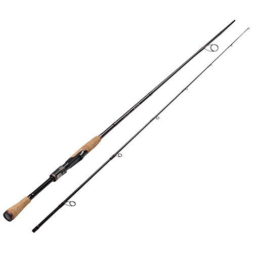 Fiblink Graphite Spinning Fishing Rod Portable Spinning Rod 2-Piece Spin Rod