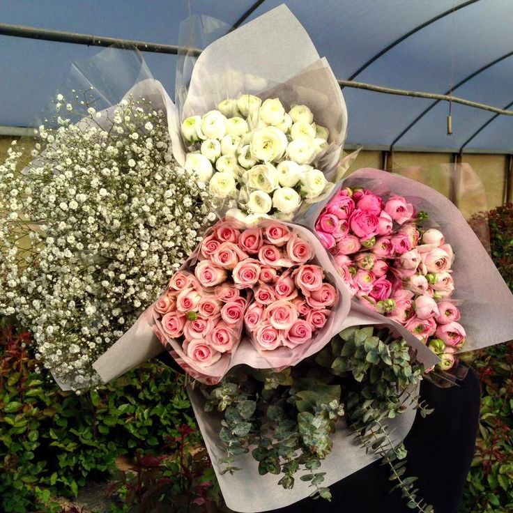 Roses, Gyp, Blue Gum and Ranunculus at Avonlea Flowers