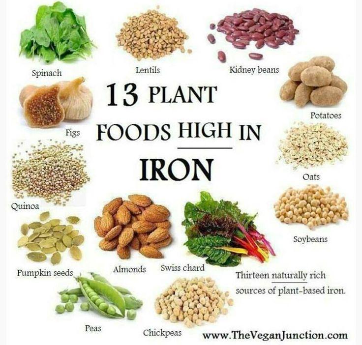 12 best VEGAN HIGH IN CALCIUM FOODS images on Pinterest ...