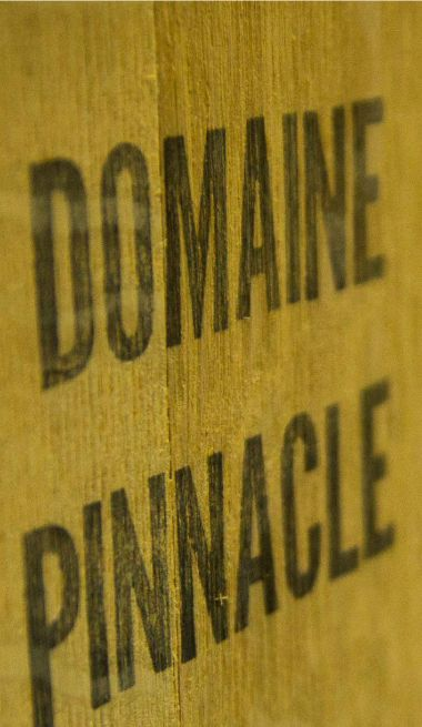 Domaine Pinnacle - sept24 communications marketing